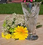 Vase Orchidée